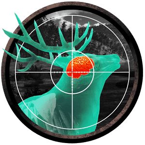 Let's Hunt: Hunting Games