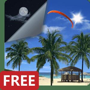 скачать Beach Palms 3D Live Wallpaper apk