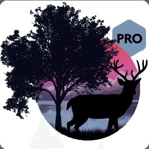 скачать Amazing Land Pro