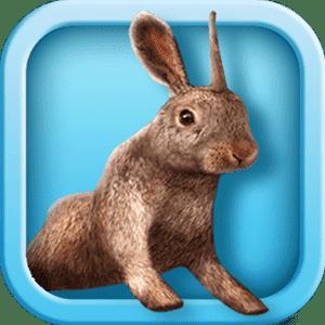 скачать Bunny Simulator