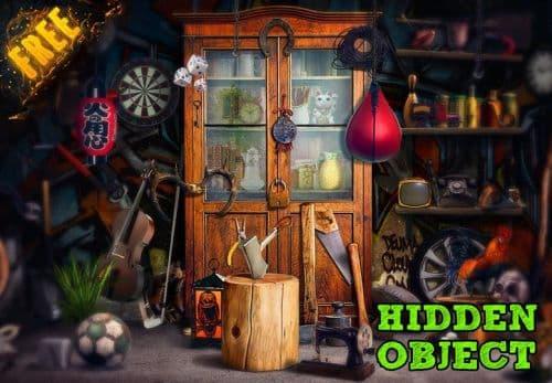 Hidden object PRO