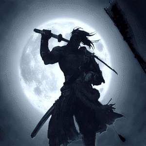 Shadow Shogun