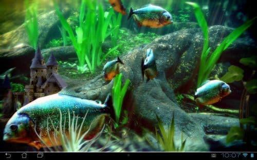 Piranha Aquarium 3D lwp